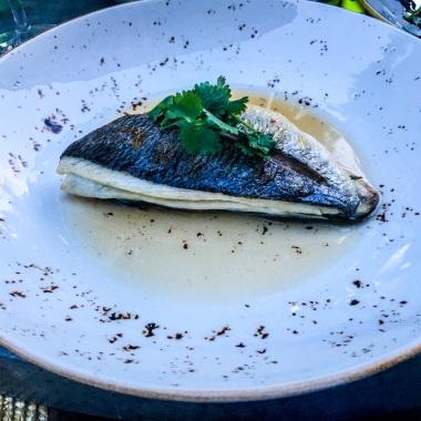 Bistro Pranciškonai - Grilled Dorada Fish